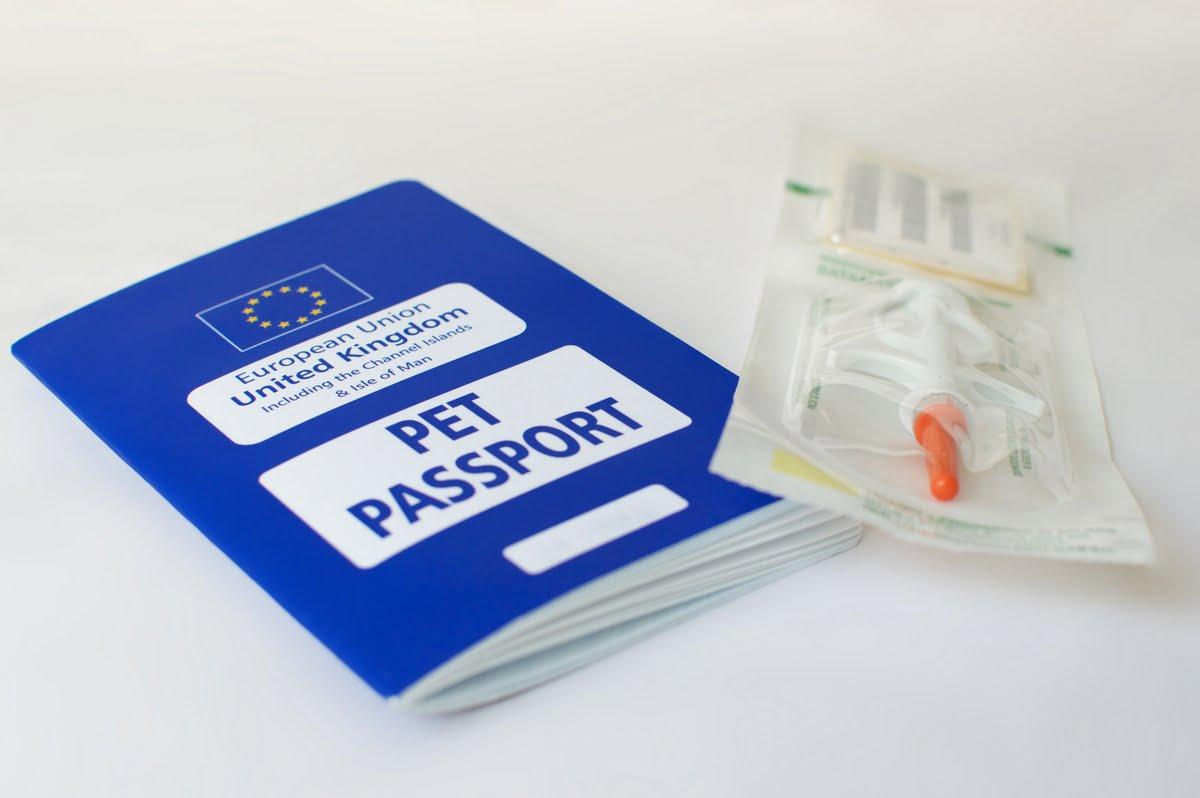 Passaporto per cani